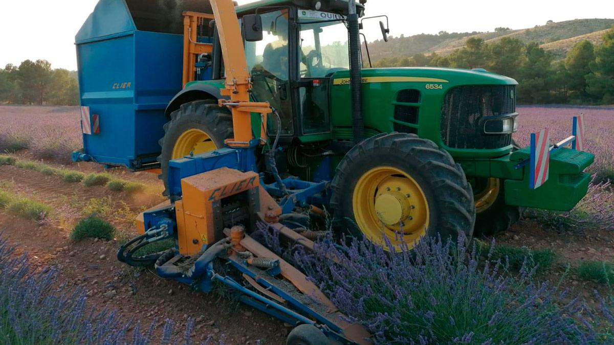 tractor-alcarria-flora